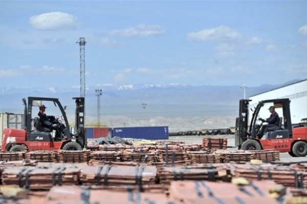 Chinese major land port sees more China-Europe freight trains